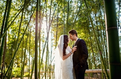Magical Bamboo garden setting for the newlyweds